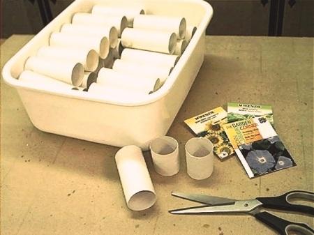 Toilet Tube Seed Planters